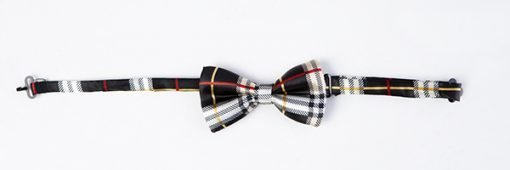 PAWBERRY BLACK BOW TIE