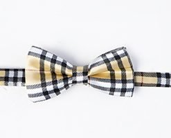 PAWBERRY BEIGE BOW TIE