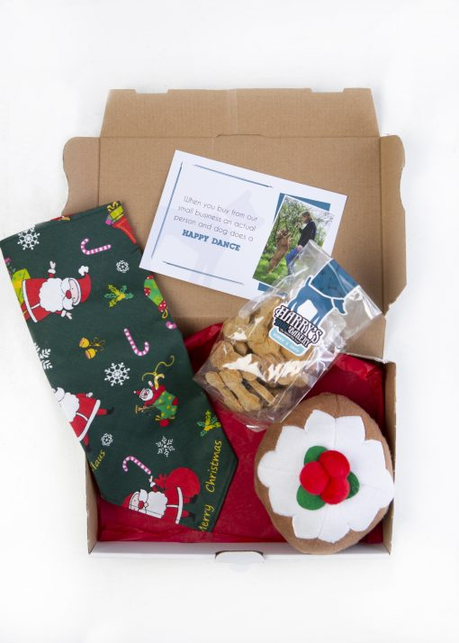 Christmas Pudding Gift Bag