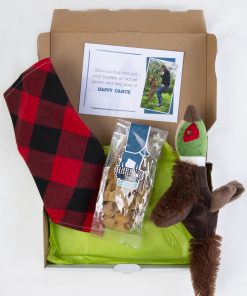 Cool Rock Dog Gift Box