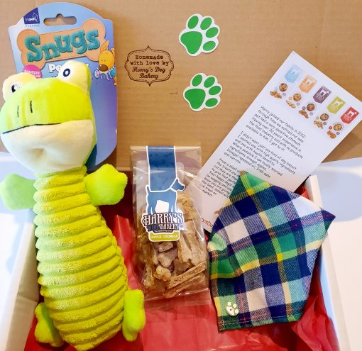 Freddie the Frog Gift Box