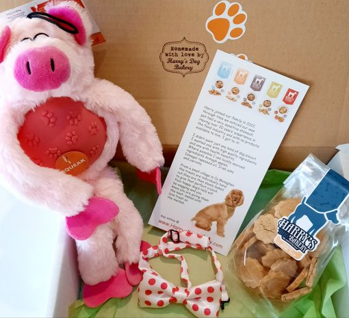Polly the Pig Gift Box